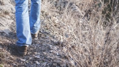 Photo of 9 Things That Happen to Your Body When You Walk Every Day