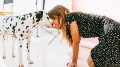 Photo of Research proves: 'People Who Talk to Pets Are Smarter Than Those Who Don't.'